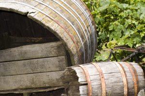 Wine Tasting in the Gisborne Region