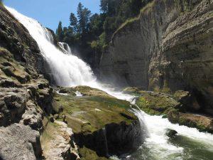 Te Reinga Falls Scenic Reserve